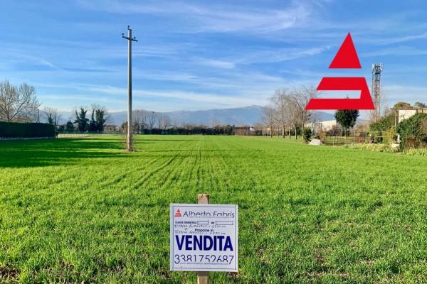 Terreno edificabile più agricolo Rossano Veneto
